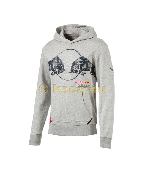 Bild von Red Bull Racing Graphic Hoodie hellgrau